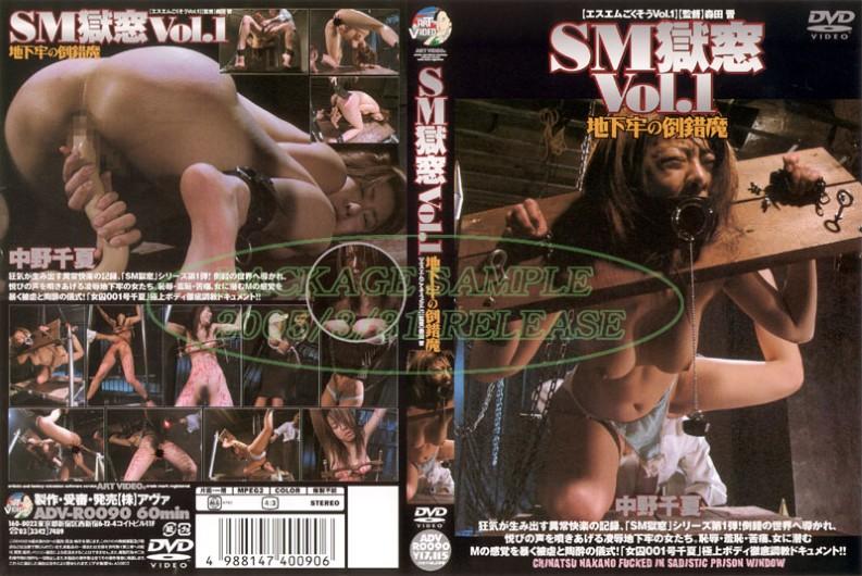 ADV-R0090 Perversion Of Magic Dungeon SM Prison Window Vol.1