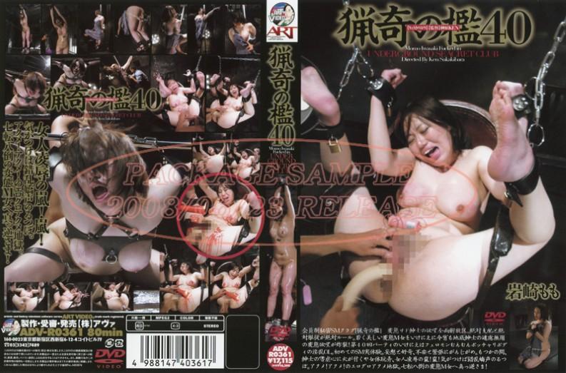 ADV-R0361 The Bizarre Cage 40