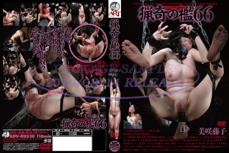 ADV-R0530 The Bizarre Cage 66