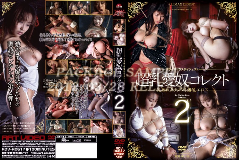 ADV-R0617 Climax Digest Slave Love Collect 2